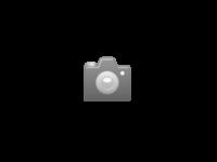 Biotin Forte Equi für ein gesundes starkes Pferdehuf