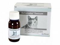 Reconvales Tonicum für Katzen & Hunde