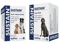 Vetplus Sustain unterstützt den Darm