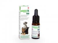 Anibidiol oil 500 - 5 % Hanfextrakt-Öl mit Rindfleisch-Aroma